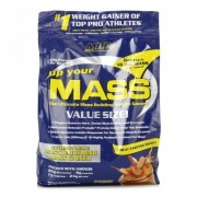 Up Your Mass 4308g.